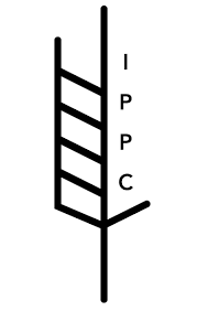 Diapo 17-Logo NIMP15.png