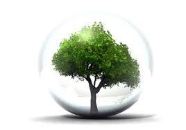 Diapo 17-Logo ecologie.png